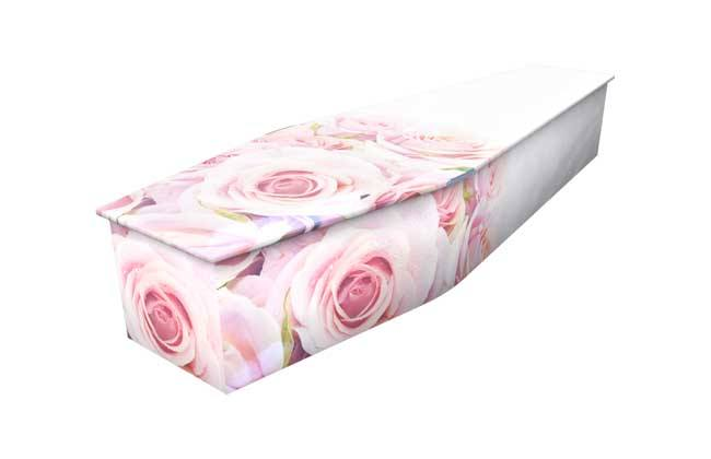 Blushing Rose Colourful Coffin